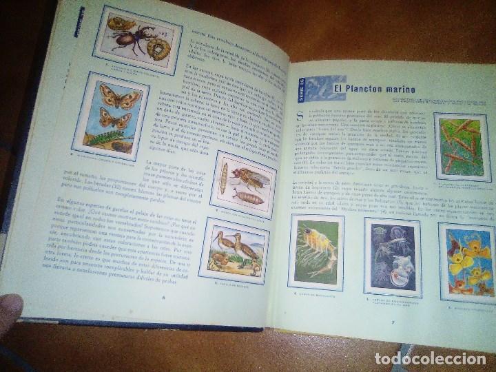 Coleccionismo Álbum: album las maravillas del universo.completo.chocolates nestle 1957 - Foto 2 - 195503486