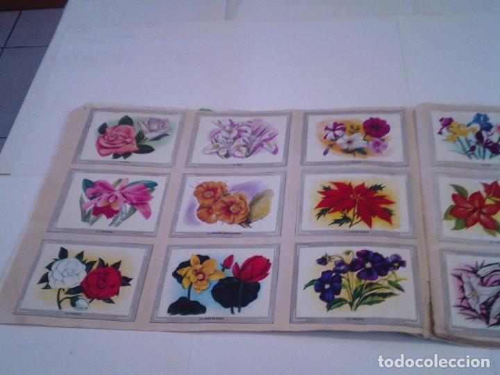Coleccionismo Álbum: VIDA Y COLOR - ALBUM DE CROMOS - ALBUMES ESPAÑOLES, SA - COMPLETO - BUEN ESTADO - GORBAUD - Foto 4 - 203384722