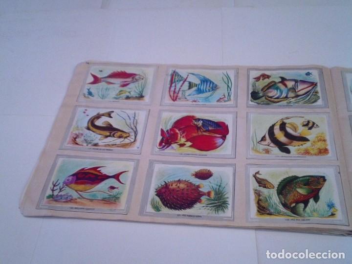 Coleccionismo Álbum: VIDA Y COLOR - ALBUM DE CROMOS - ALBUMES ESPAÑOLES, SA - COMPLETO - BUEN ESTADO - GORBAUD - Foto 16 - 203384722