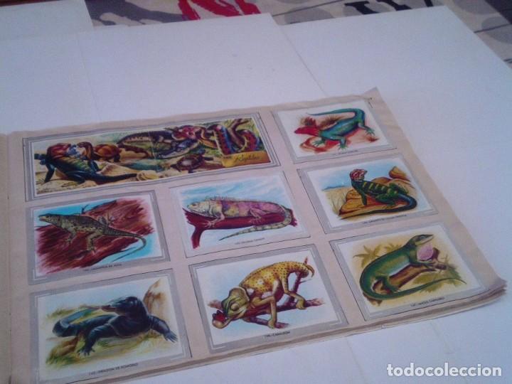 Coleccionismo Álbum: VIDA Y COLOR - ALBUM DE CROMOS - ALBUMES ESPAÑOLES, SA - COMPLETO - BUEN ESTADO - GORBAUD - Foto 19 - 203384722