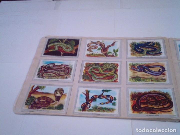 Coleccionismo Álbum: VIDA Y COLOR - ALBUM DE CROMOS - ALBUMES ESPAÑOLES, SA - COMPLETO - BUEN ESTADO - GORBAUD - Foto 20 - 203384722