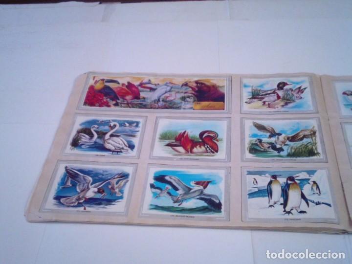 Coleccionismo Álbum: VIDA Y COLOR - ALBUM DE CROMOS - ALBUMES ESPAÑOLES, SA - COMPLETO - BUEN ESTADO - GORBAUD - Foto 22 - 203384722