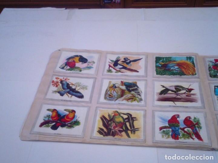 Coleccionismo Álbum: VIDA Y COLOR - ALBUM DE CROMOS - ALBUMES ESPAÑOLES, SA - COMPLETO - BUEN ESTADO - GORBAUD - Foto 26 - 203384722