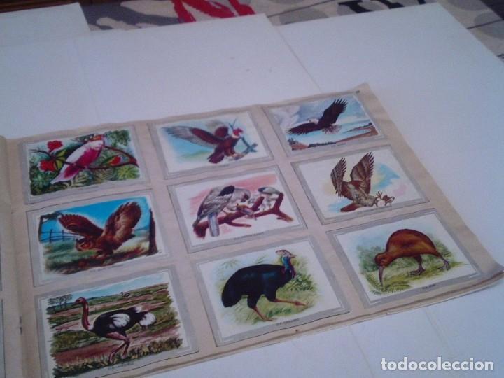 Coleccionismo Álbum: VIDA Y COLOR - ALBUM DE CROMOS - ALBUMES ESPAÑOLES, SA - COMPLETO - BUEN ESTADO - GORBAUD - Foto 27 - 203384722