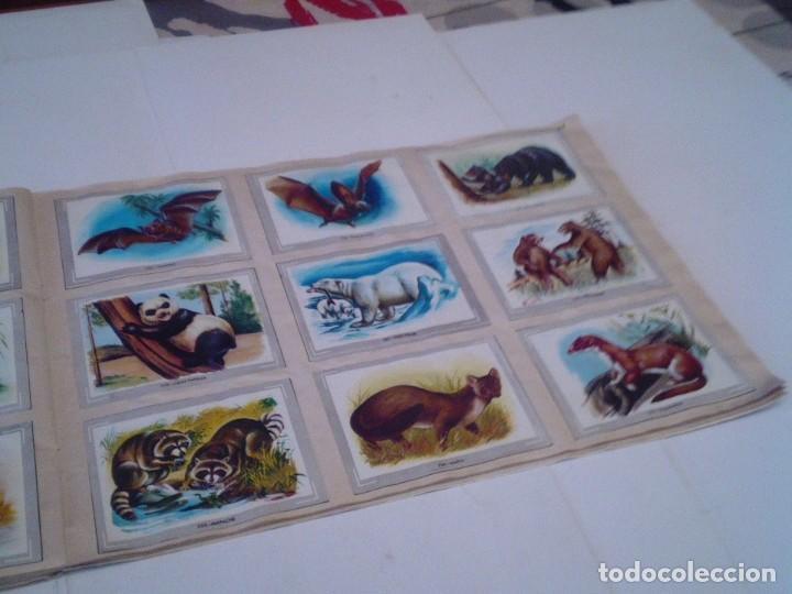 Coleccionismo Álbum: VIDA Y COLOR - ALBUM DE CROMOS - ALBUMES ESPAÑOLES, SA - COMPLETO - BUEN ESTADO - GORBAUD - Foto 29 - 203384722