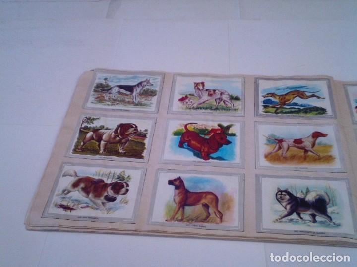 Coleccionismo Álbum: VIDA Y COLOR - ALBUM DE CROMOS - ALBUMES ESPAÑOLES, SA - COMPLETO - BUEN ESTADO - GORBAUD - Foto 32 - 203384722