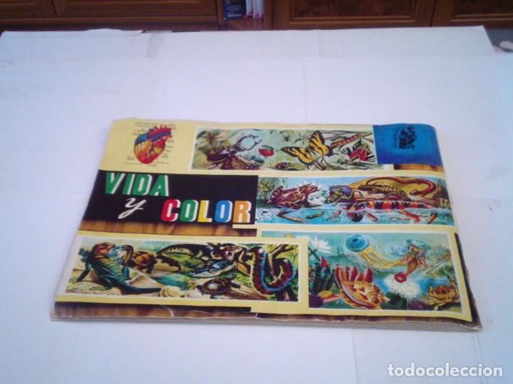 Coleccionismo Álbum: VIDA Y COLOR - ALBUM DE CROMOS - ALBUMES ESPAÑOLES, SA - COMPLETO - BUEN ESTADO - GORBAUD - Foto 48 - 203384722