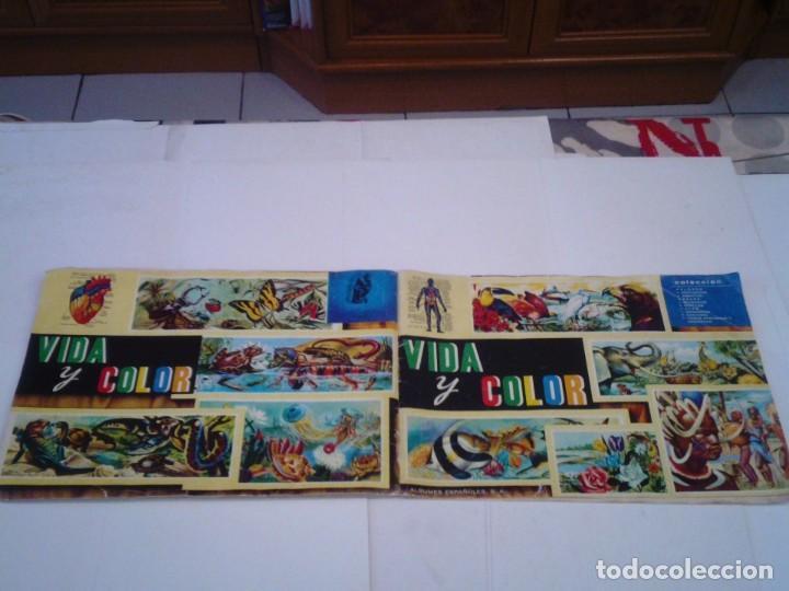 Coleccionismo Álbum: VIDA Y COLOR - ALBUM DE CROMOS - ALBUMES ESPAÑOLES, SA - COMPLETO - BUEN ESTADO - GORBAUD - Foto 49 - 203384722