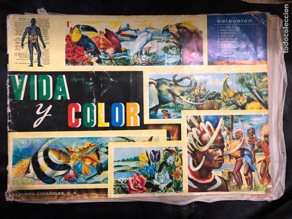 ALBUM VIDA Y COLOR - COMPLETO (Coleccionismo - Cromos y Álbumes - Álbumes Completos)