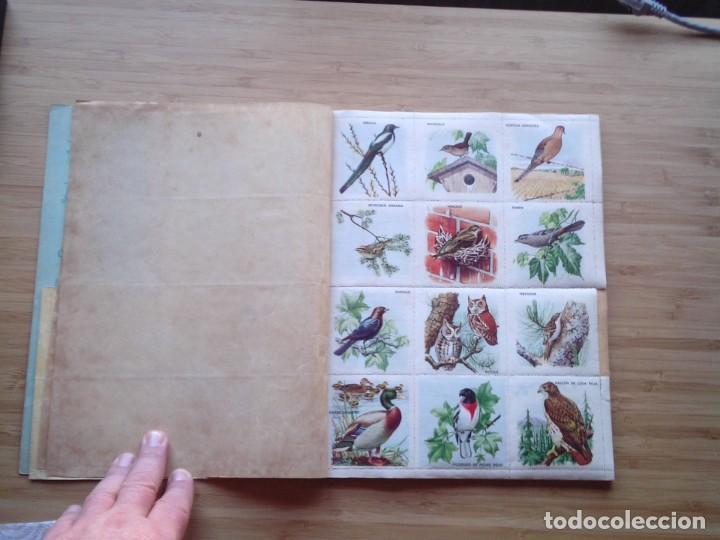 Coleccionismo Álbum: GALERIA DE PAJAROS - LIBRO DE ORO DE ESTAMPAS - NUMERO 2 - COMPLETO - BUEN ESTADO - NOVARO - GORBAUD - Foto 3 - 205047378
