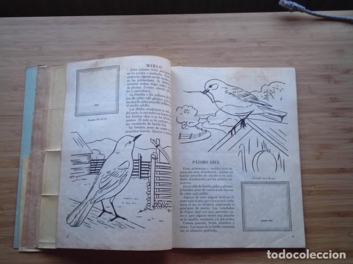 Coleccionismo Álbum: GALERIA DE PAJAROS - LIBRO DE ORO DE ESTAMPAS - NUMERO 2 - COMPLETO - BUEN ESTADO - NOVARO - GORBAUD - Foto 6 - 205047378