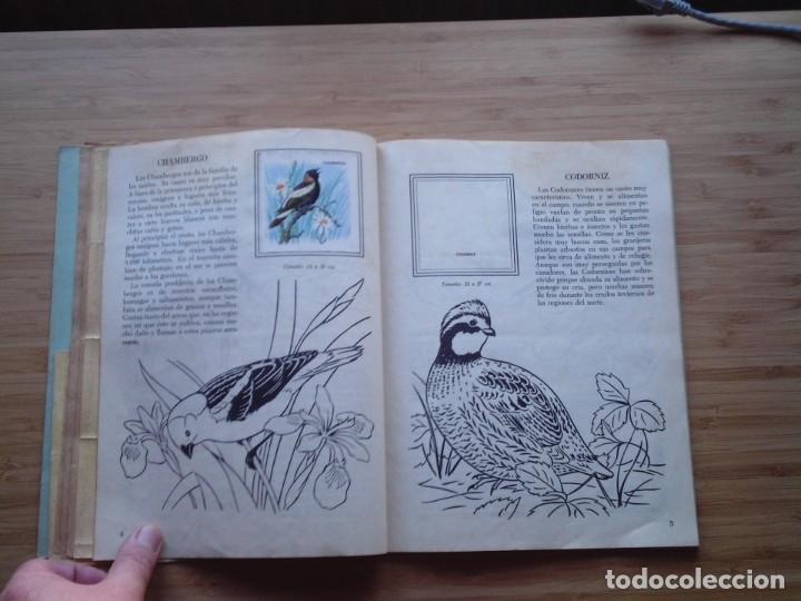Coleccionismo Álbum: GALERIA DE PAJAROS - LIBRO DE ORO DE ESTAMPAS - NUMERO 2 - COMPLETO - BUEN ESTADO - NOVARO - GORBAUD - Foto 7 - 205047378