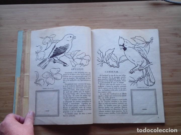 Coleccionismo Álbum: GALERIA DE PAJAROS - LIBRO DE ORO DE ESTAMPAS - NUMERO 2 - COMPLETO - BUEN ESTADO - NOVARO - GORBAUD - Foto 8 - 205047378