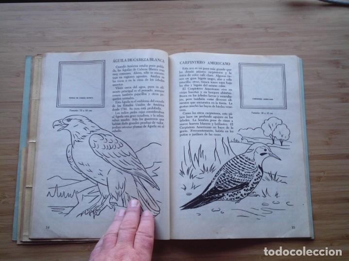 Coleccionismo Álbum: GALERIA DE PAJAROS - LIBRO DE ORO DE ESTAMPAS - NUMERO 2 - COMPLETO - BUEN ESTADO - NOVARO - GORBAUD - Foto 12 - 205047378