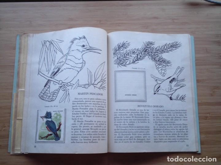 Coleccionismo Álbum: GALERIA DE PAJAROS - LIBRO DE ORO DE ESTAMPAS - NUMERO 2 - COMPLETO - BUEN ESTADO - NOVARO - GORBAUD - Foto 16 - 205047378