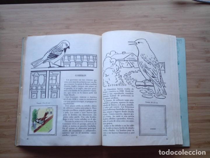 Coleccionismo Álbum: GALERIA DE PAJAROS - LIBRO DE ORO DE ESTAMPAS - NUMERO 2 - COMPLETO - BUEN ESTADO - NOVARO - GORBAUD - Foto 25 - 205047378