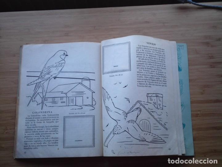 Coleccionismo Álbum: GALERIA DE PAJAROS - LIBRO DE ORO DE ESTAMPAS - NUMERO 2 - COMPLETO - BUEN ESTADO - NOVARO - GORBAUD - Foto 26 - 205047378