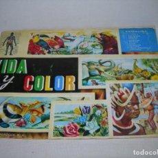 Coleccionismo Álbum: VIDA Y COLOR - MÍTICO ALBUM DE CROMOS TOTALMENTE COMPLETO DE 1965 - ALBUMES ESPAÑOLES S.A. -. Lote 206596315