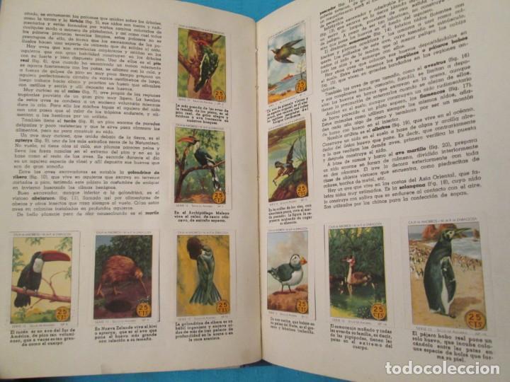 Coleccionismo Álbum: SELLOS DEL AHORRO INFANTIL - Foto 4 - 210363376