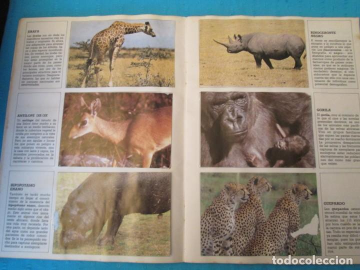 Coleccionismo Álbum: ESPECIES EN PELIGRO URBION - Foto 3 - 210363677