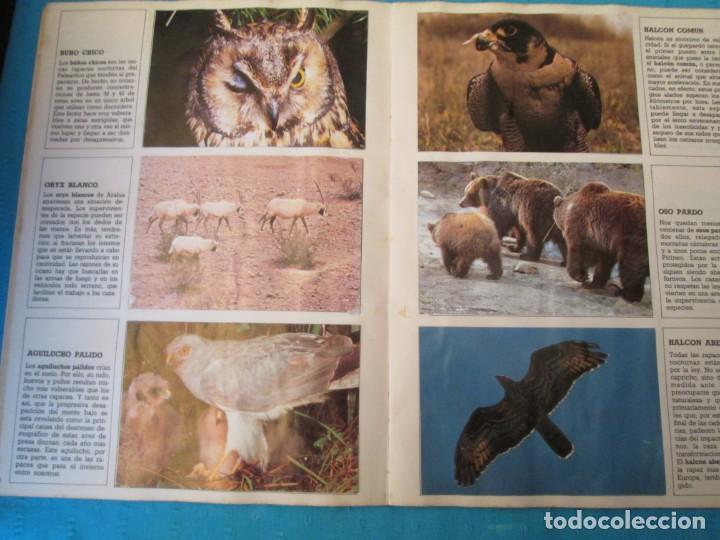 Coleccionismo Álbum: ESPECIES EN PELIGRO URBION - Foto 4 - 210363677