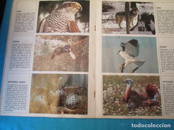 Coleccionismo Álbum: ESPECIES EN PELIGRO URBION - Foto 5 - 210363677