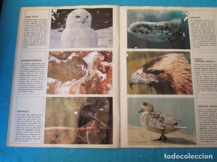Coleccionismo Álbum: ESPECIES EN PELIGRO URBION - Foto 6 - 210363677