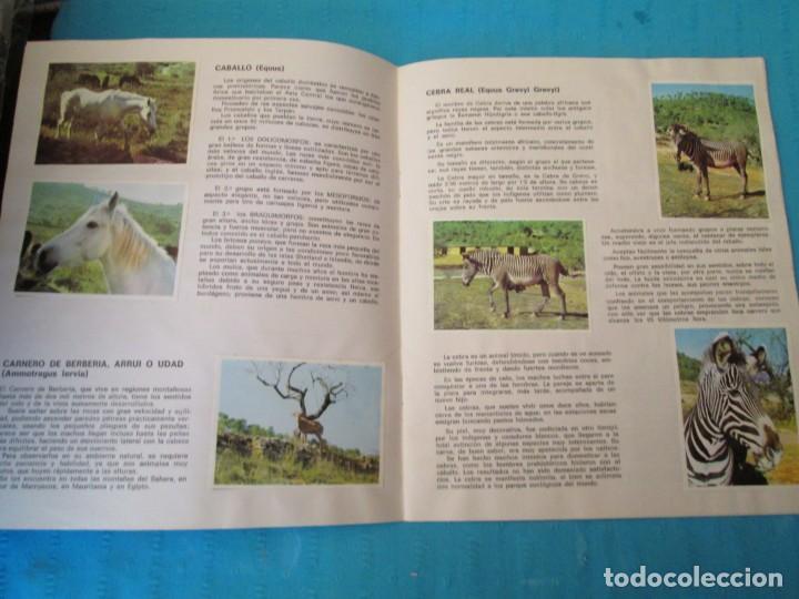 Coleccionismo Álbum: SAFARI - Foto 2 - 210367378