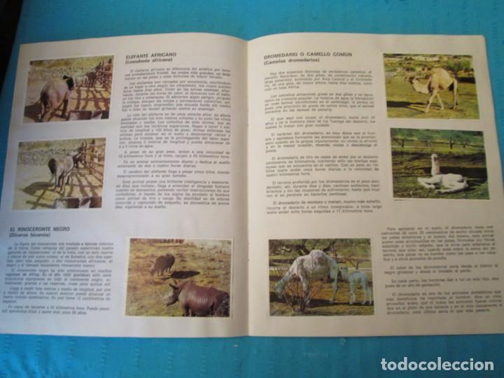 Coleccionismo Álbum: SAFARI - Foto 3 - 210367378