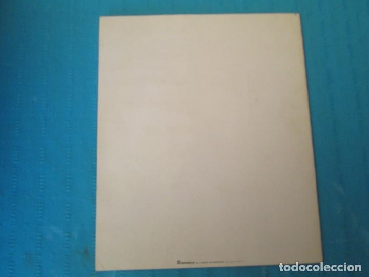 Coleccionismo Álbum: SAFARI - Foto 5 - 210367378
