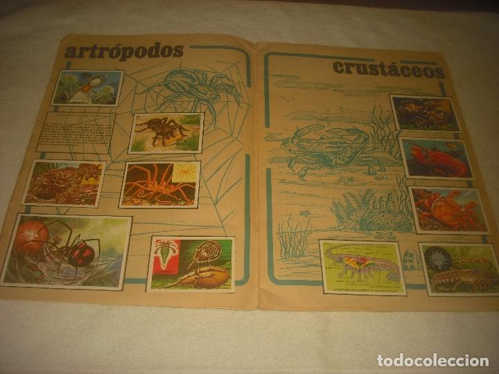 Coleccionismo Álbum: PANORAMA ZOOLOGICO . COLECCION DE 250 CROMOS COMPLETO CON RECORTABLES - Foto 3 - 212202002