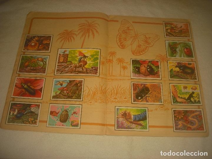 Coleccionismo Álbum: PANORAMA ZOOLOGICO . COLECCION DE 250 CROMOS COMPLETO CON RECORTABLES - Foto 4 - 212202002