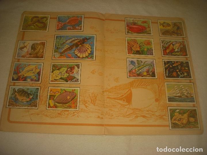 Coleccionismo Álbum: PANORAMA ZOOLOGICO . COLECCION DE 250 CROMOS COMPLETO CON RECORTABLES - Foto 5 - 212202002