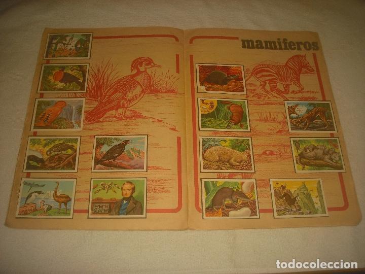 Coleccionismo Álbum: PANORAMA ZOOLOGICO . COLECCION DE 250 CROMOS COMPLETO CON RECORTABLES - Foto 7 - 212202002