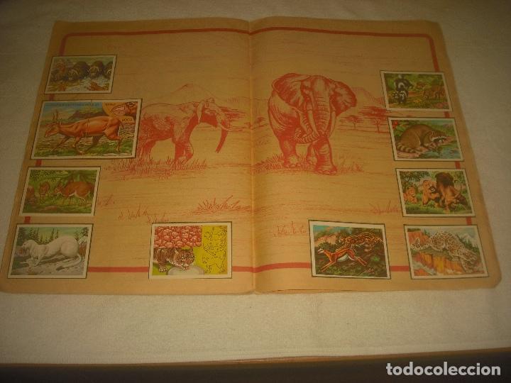 Coleccionismo Álbum: PANORAMA ZOOLOGICO . COLECCION DE 250 CROMOS COMPLETO CON RECORTABLES - Foto 8 - 212202002