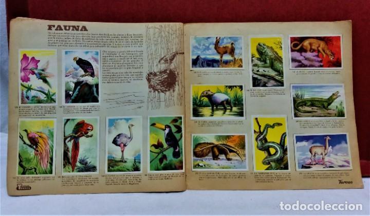 Coleccionismo Álbum: ÁLBUM DE CROMOS COMPLETO PANORÁMICA DE AMÉRICA LATINA,DE CHOCOLATES TORRAS.AÑO 1963 - Foto 8 - 217199553