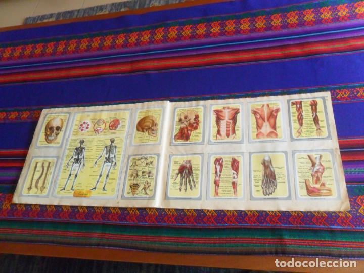 Coleccionismo Álbum: VIDA Y COLOR 1 COMPLETO 380 CROMOS. ÁLBUMES ESPAÑOLES 1965. - Foto 7 - 218719445