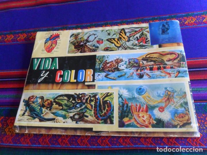 Coleccionismo Álbum: VIDA Y COLOR 1 COMPLETO 380 CROMOS. ÁLBUMES ESPAÑOLES 1965. - Foto 9 - 218719445