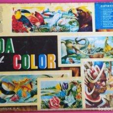 Coleccionismo Álbum: VIDA Y COLOR . ALBUMES ESPAÑOLES S.A. AÑO 1965 COMPLETO. Lote 220769652