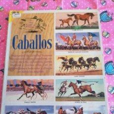 Collezionismo Álbum: LIBRO DE ORO DE ESTAMPAS-CROMOS CABALLOS 44 ESTAMPAS- CROMOS COMPLETO. Lote 221273177