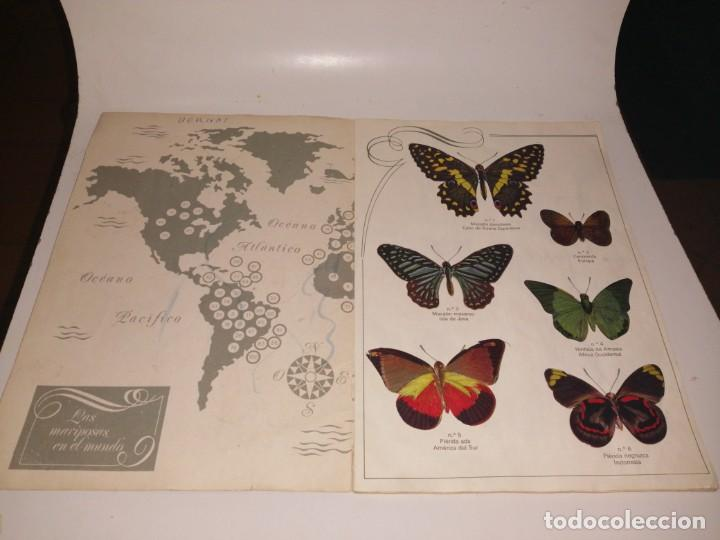 Coleccionismo Álbum: Las cien mariposas más bellas del mundo álbum panrico , completo ver fotos - Foto 3 - 221727193