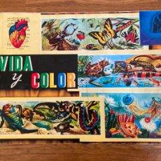 Coleccionismo Álbum: ALBUM DE CROMOS COMPLETO - VIDA Y COLOR - ALBUMES ESPAÑOLES S.A. - GCH1. Lote 222552656