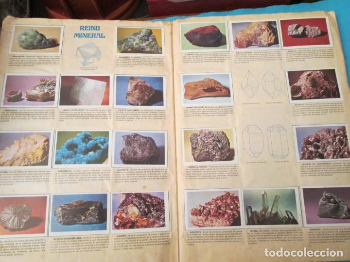 Coleccionismo Álbum: NATURALEZA FHER - Foto 6 - 210358070