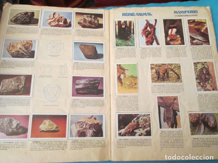 Coleccionismo Álbum: NATURALEZA FHER - Foto 7 - 210358070