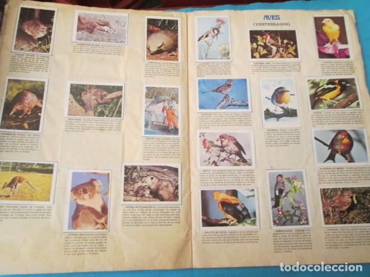 Coleccionismo Álbum: NATURALEZA FHER - Foto 11 - 210358070