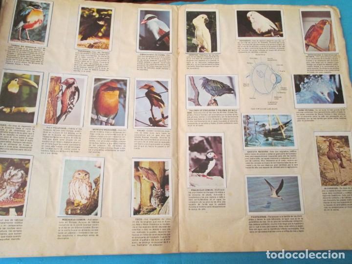 Coleccionismo Álbum: NATURALEZA FHER - Foto 12 - 210358070
