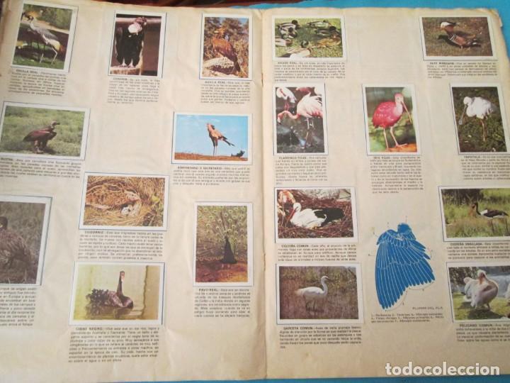 Coleccionismo Álbum: NATURALEZA FHER - Foto 13 - 210358070