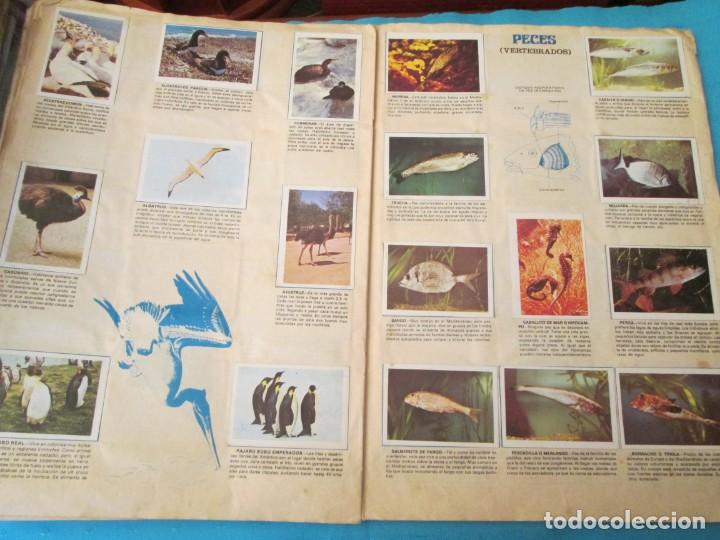 Coleccionismo Álbum: NATURALEZA FHER - Foto 14 - 210358070