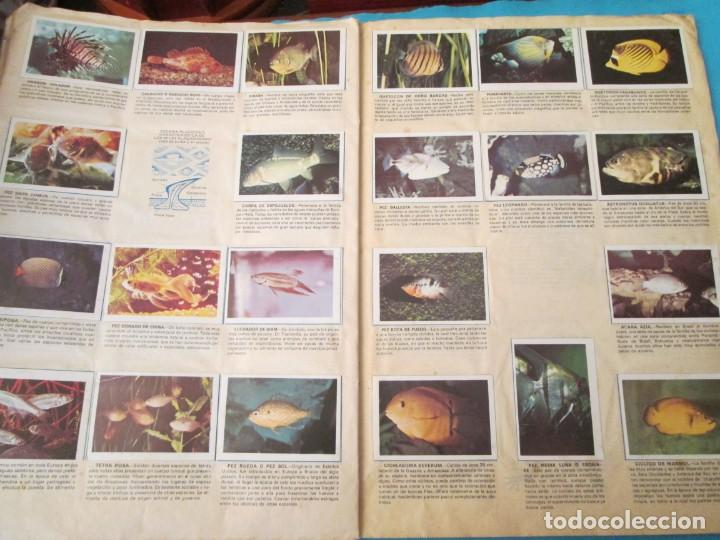 Coleccionismo Álbum: NATURALEZA FHER - Foto 15 - 210358070