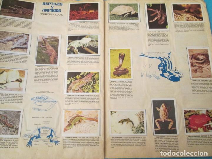 Coleccionismo Álbum: NATURALEZA FHER - Foto 16 - 210358070